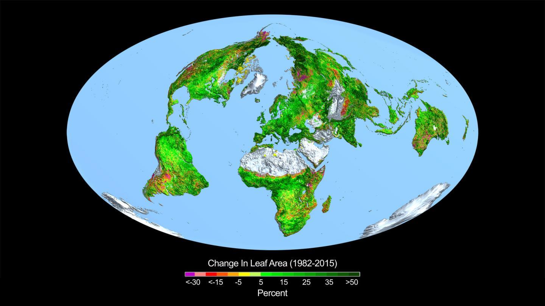 leaf-area change 1982 to 2015 NASAS